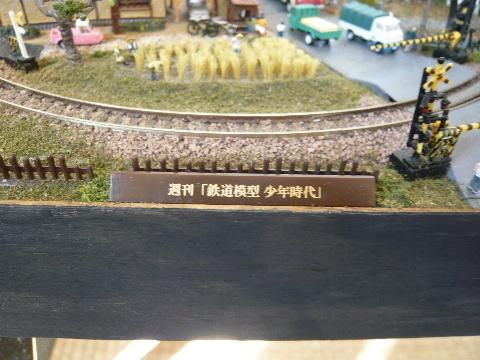 P1040949(1).JPG